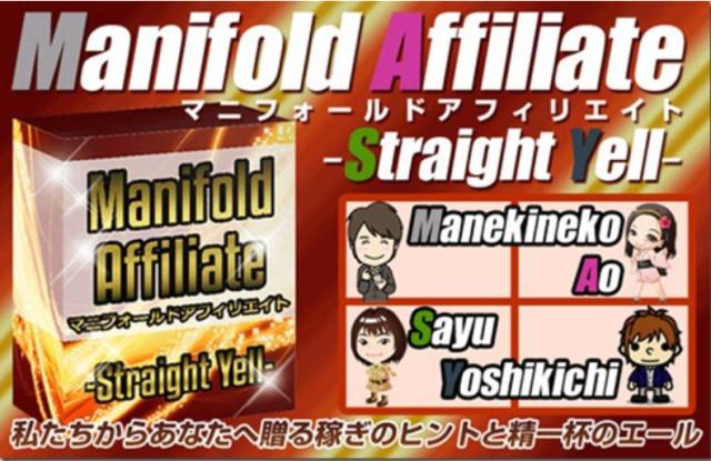Manifold Affiliate(マニフォールドアフィリエイト)【1次配布権付き】 